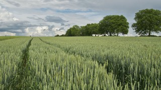 lincolnshire-farming