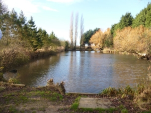 Rossways Lakes and Lodges
