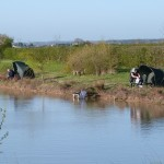 Canal Farm Cottages